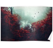 Barrier - enchanted Forest Poster