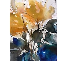 Yellow spring Photographic Print