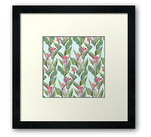 tropical flower canna Framed Print