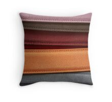 Coloured Suede Throw Pillow