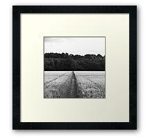 Landscape #2 Framed Print