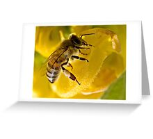 Black On Yellow Greeting Card