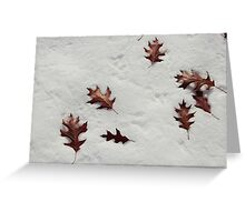Fallen Leaves on the Snow Greeting Card