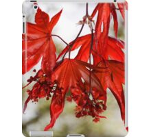 Autumn Red Maple Leaf iPad Case/Skin