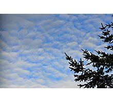 """ Blue Mackerel Sky "" Photographic Print"