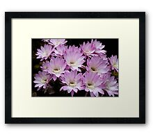 Profusion of Pink Cactus Framed Print