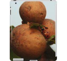 Laydbird On Oak Apples iPad Case/Skin