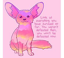 """You Won't Be Defeated Now"" Fennec Fox Photographic Print"