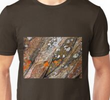 Lichen On Rock Unisex T-Shirt
