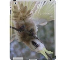 Crazy Cockatoo iPad Case/Skin