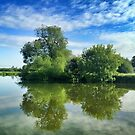 Thames River Reflection by Ludwig Wagner