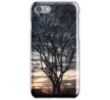 Sunrise Through a Tree iPhone Case/Skin