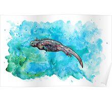 Marine iguana, Amazing animal I Poster