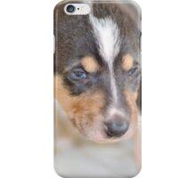 Cute smooth collie puppy iPhone Case/Skin