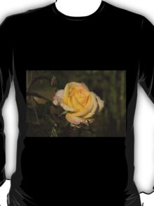 Golden Yellow Sparkles - a Fresh Rose With Dewdrops T-Shirt