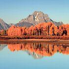 Oxbow Autumn by Ann  Van Breemen