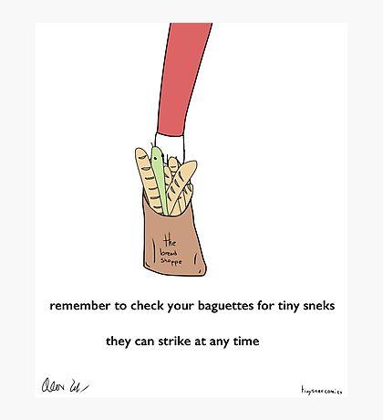 Baguettes - A Tiny Snek Comic Photographic Print