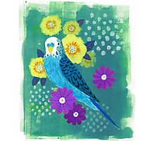 budgie on green Photographic Print