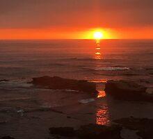 California Sunset by Kimberly Palmer