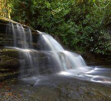 Martin Creek Rapids by Steve Bass