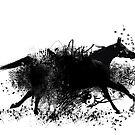 Black Diamond - Run Free by scatharis