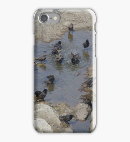 Communal Tub iPhone Case/Skin