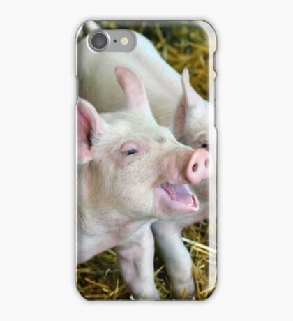 Playful Piggies iPhone Case/Skin
