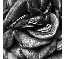 rozy rozze Photographic Print