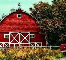 The Red Barn by Ann  Van Breemen