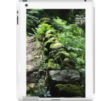 On The Damp Side iPad Case/Skin