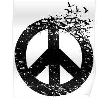 bird  peace Poster