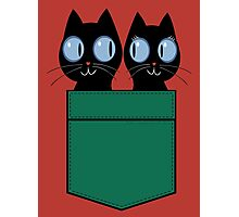 CUTE BLACK CATS IN GREEN POCKET Photographic Print