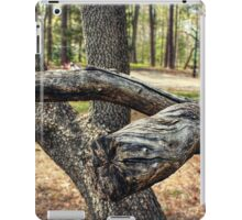 Cracked Branches iPad Case/Skin