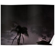 stormy nights ft palm tree Poster