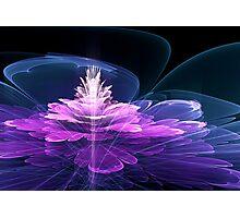 3d Fractal Flower Photographic Print