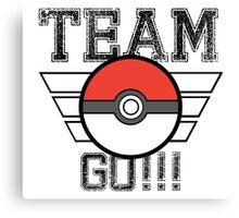 Team GO! Canvas Print
