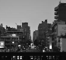A High Line Avenue by karimrouabah