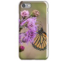 Foggy Morning Monarch iPhone Case/Skin