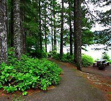 Walking Path Along Detroit Lake...Detroit, Oregon by Diane Arndt
