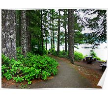 Walking Path Along Detroit Lake...Detroit, Oregon Poster