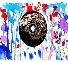 Red White and Blue Bird  Photographic Print