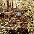 Abandoned GMC Pickup by mal-photography