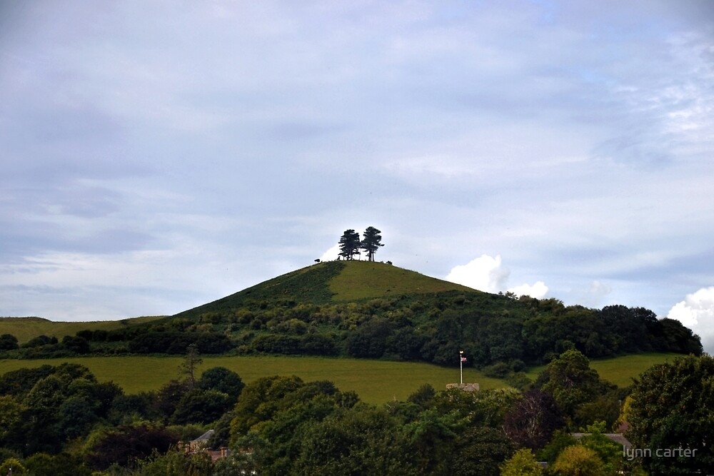 Colmer Hll...Symondsbury Dorset,UK by lynn carter