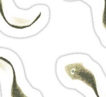 Little flatworms Sticker