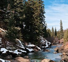 Buck Gulch by Gary Gray