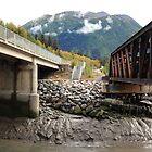 Two bridges by zumi