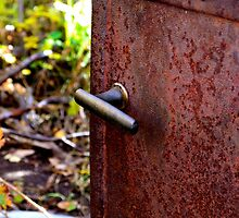 Left to Rust by dmacneil