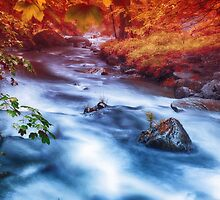 Magic River by Enri-Art