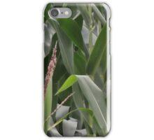 The Corn Field iPhone Case/Skin