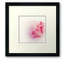 Abstract rose in ice  Framed Print